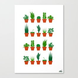 Small Plants Canvas Print