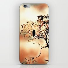 Day Dreamer iPhone & iPod Skin