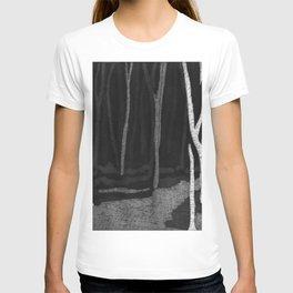 Glendalough Haze T-shirt