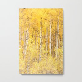 Golden Apen Trees Metal Print