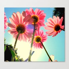 dancing in the sun Canvas Print