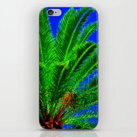 palm tree iPhone & iPod Skins featuring Palm Tree by Phil Smyth