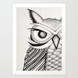 Ossabaw Natives : Owl Art Print