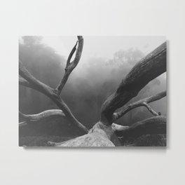 That SF Tree Metal Print
