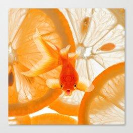 Orange Fish Canvas Print