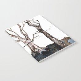 Enchanted Notebook