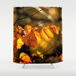 Linden tree leaves in autumn Shower Curtain