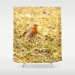 Hello Robin! Shower Curtain