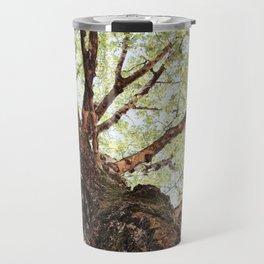 Old Birch in Spring Travel Mug