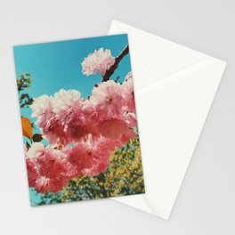 Spring Flowers in D.C. Stationery Cards