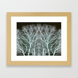 Frosted Trees Framed Art Print