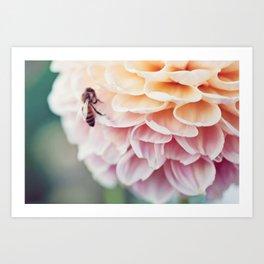 Bees III Art Print