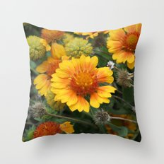 A Full Cycle Throw Pillow
