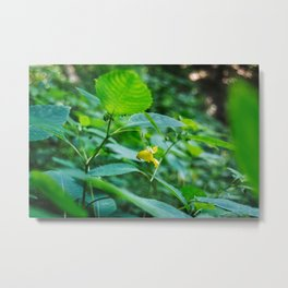 Lonely Yellow Flower Metal Print