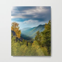 Sunlight Valley // Dense Forest View through the Autumn Colors in Colorado Metal Print
