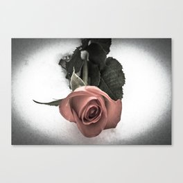 Rose resting in the snow Canvas Print