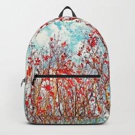 I Scratch the Sky Backpack