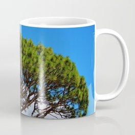 Italian Stone Pine Coffee Mug