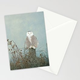 You Are Too Beautiful Stationery Cards