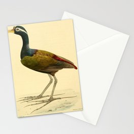 parra superciliosa6 Stationery Cards