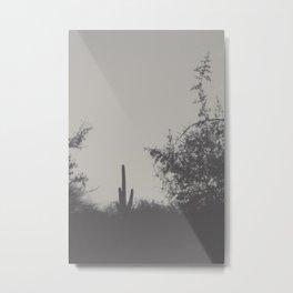 Saguaro Cactus II Metal Print