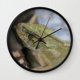 Wild Chameleon In Green Shades Wall Clock