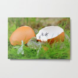 Finally out of the egg after patience Metal Print