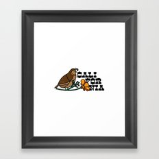 California Quail Framed Art Print