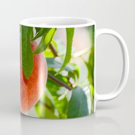The Peach Coffee Mug