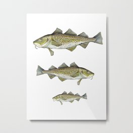 CodFish Metal Print