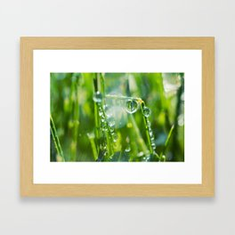 Swings Framed Art Print