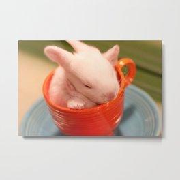 Teacup Bunny 2 Metal Print