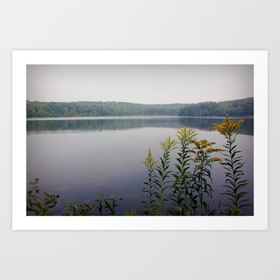 Moon Lake Park  Art Print
