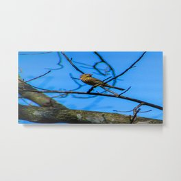 Birds in the Sky Metal Print