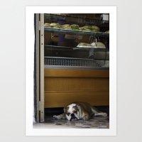 english bulldog Art Prints featuring English Bulldog by sovichka