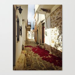 Streets of Greece Canvas Print