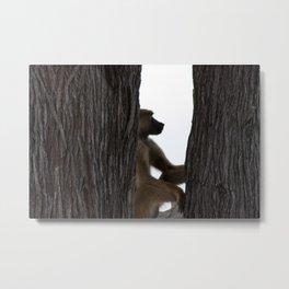 Baboon Sitting in a Tree, Tanzania Safari Landscape Metal Print
