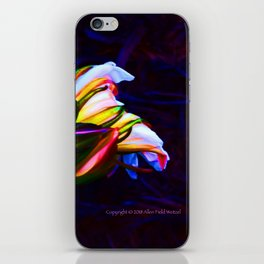 """Cactus Flower At Sunset #85"" Photograph iPhone Skin"