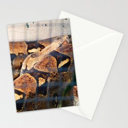 Sleeping Snake Stationery Cards
