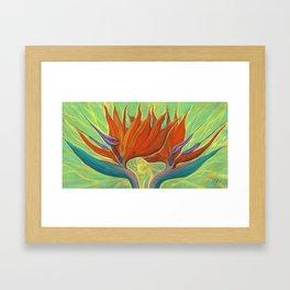 Strelitzia / Bird of Paradise Framed Art Print