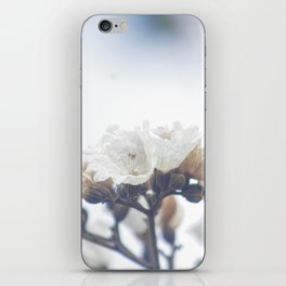 If They Don't Worry Why Should I? iPhone Skin
