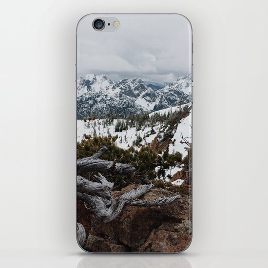 Wenatchee National Forest iPhone & iPod Skin