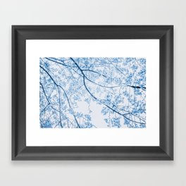blue cherry blossom Framed Art Print