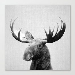 Moose - Black & White Canvas Print