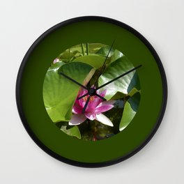 pink water lily XI Wall Clock