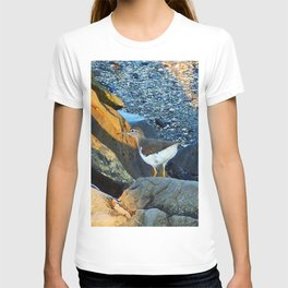 Greater Yellow Legs on the rocks T-shirt