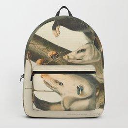 Vintage Illustration of Mother and Baby Possum - John James Audubon - 1840 Backpack