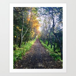 A Walk in the Park, Iceland Art Print
