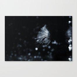 Sakana 03 Canvas Print