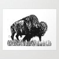 buffalo Art Prints featuring Buffalo by Elizabeth Stettler